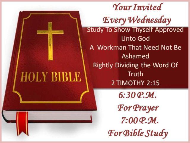 Bible Study 2014 (2)